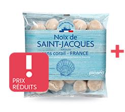 Noix de Saint-Jacques France
